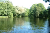 where to fish in devon. Millbrook Cottages