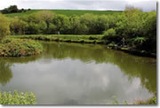 Where to fish in Cornwall. St. Tinney Farm